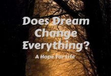 Does Dream Change Everything